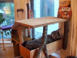 image of cedar outdoor cat furniture