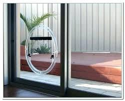sliding glass door dog panel sliding
