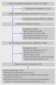 term paper elements pdf