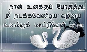 Christian Quotes In Tamil Best Of TAMIL BIBLE VERSE IMAGES HD TAMIL CHRISTIAN BIBLE VERSE PICTURES