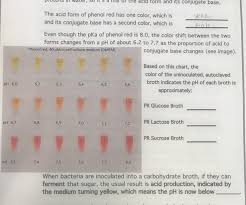 Phenol Red Colour Chart Solved Form And Its Conjugate Base The Acid Form Of Phen