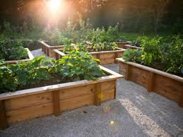 Small Picture How to Make a DIY Raised Bed Using Building Blocks DIY Network