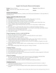 Board Report Template Word Report Template Ceo Monthly Report Template Templates C