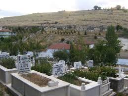 Kredi kartına itina ile mezar kazılır' - Magazin Haberleri | NTV