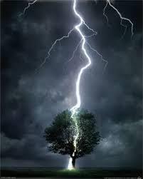 Image result for lightning fall on man near tree