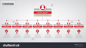 Organization Chart Vector Rectangle Organization Chart Infographics People Icon