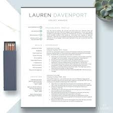 One Page Resume Templates Modern 1 Page Resume Template