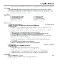 Organizational Skills Resume 768994