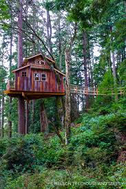 tree house plans for adults. Decorating:21 Most Wonderful Treehouse Design Ideas For Adult And Kids With Decorating Special Images Tree House Plans Adults