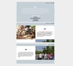 Web Design Reston Pet Fiesta Reston Va On Behance