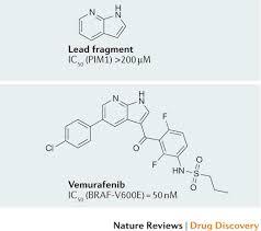 Fragment Based Drug Design Ppt Twenty Years On The Impact Of Fragments On Drug Discovery
