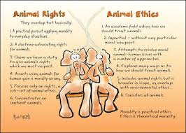 philosophies of animal rights animal ethics animal welfare compare animal rights and ethics