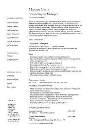 Project Management Resume Samples Senior Project Manager Resume