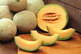 Budi Daya Melon, Dari Lahan Sempit Menjadi Jutawan