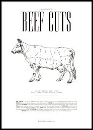 Cow Meat Chart Poster Beef Chart Poster
