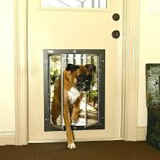 back door with dog door built in exterior cat door large dog door for sliding glass door exterior door with built in large doors with pet door built in