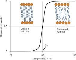 membrane phospholipid an overview