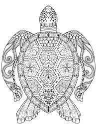 Owl Coloring Pages Pdfury Gorgeous Free Printable Adult Of Sheets