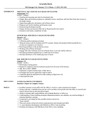 Sql Server Database Developer Resume Samples | Velvet Jobs