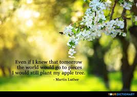 Tree Quotes Unique Even If I Knew That Tomorrow The World Would Go To Pi Martin