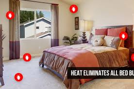full size of bed diy bed bug heat treatment experienced arizona oldest company heat safest