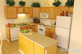 Decorating Small Kitchen Small Kitchen Design Pictures