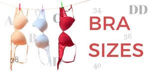 Bra Sizes List Of Bra Sizes Smallest To Largest Bra Sizes