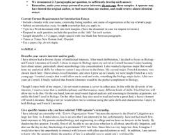 essay introduction example gallery for essay introductions reflective essay introduction paragraph view larger resume cover letter introductory paragraph examples