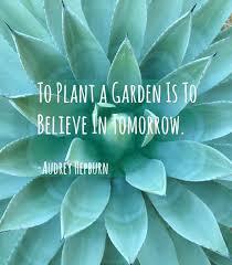 Quote Garden Inspiration Garden Quotes Garden Quote Garden Quotes For May Symptomsoflupus