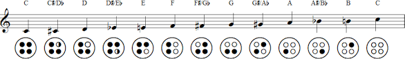 4 Hole Ocarina Notes Chart The Differences Between Transverse And Pendant Ocarinas
