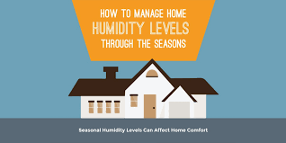 How To Manage Humidity Levels Through The Seasons Infographic