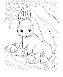 Small Picture Coloring Pages For Kids Rabbit And Her Babies Animal Coloring