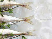 Рыба: лучшие изображения (7) | Рыба, Еда и Кулинария