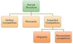 Difference Between Perfect Competition And Monopolistic