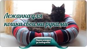 Лежанка для кошки своими руками - YouTube