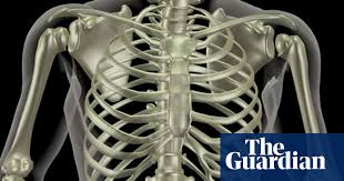 The rib cage is a bony structure found in the chest (thoracic cavity). Mapping The Body Ribs Human Biology The Guardian