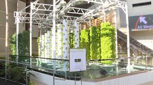 orange county convention center completes sustainable center to table gardens