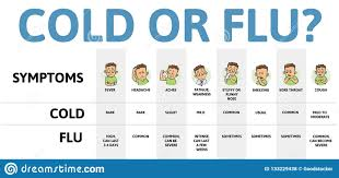 Flu Cold Symptoms Chart Cold And Flu Symptoms Table Infographic Poster With Text