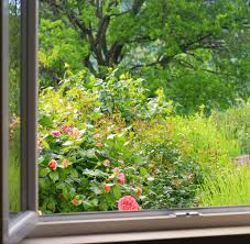 Image result for a window on to a garden