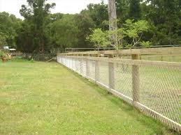 Link creative chain link fence idea for backyard with bamboo