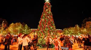 tree-lighting-image