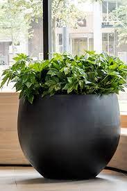 large project planters pottery pots