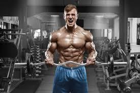 muskelaufbau fitnessstudio