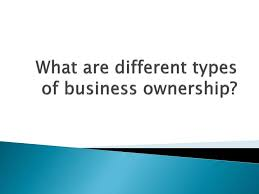 types of business ownerships different types of business ownership military bralicious co