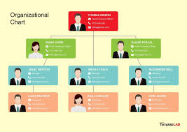 Microsoft Office Org Chart Ms Office Organization Chart Template Dattstar Com