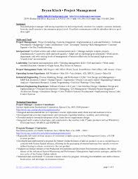 Construction Project Manager Resume Sample Doc New Project Manager