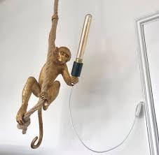 Monkeylamp Hash Tags Deskgram