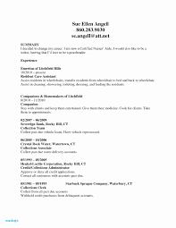 Resume For Teens Fascinating Security Guard Resume 48 Resume Templates For Teens Resume