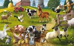 animals wallpaper. Contemporary Wallpaper 1920x1200 Farm Animal Wallpaper In Animals Wallpaper L
