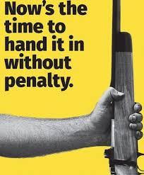Image result for gun amnesty